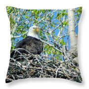 An Eagle In Its Nest  Throw Pillow