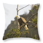 An Eagle In The Spring Throw Pillow