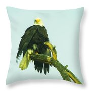 An Eagle Shaking It Off Throw Pillow