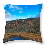 An Early Fall Day At Cary Lake Throw Pillow