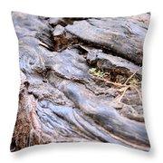 An Earthen Abstract Throw Pillow