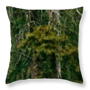 An Elk In The Woods Throw Pillow