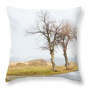 An Empty Path Throw Pillow