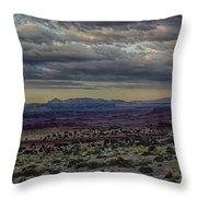 An Evening In The Desert Throw Pillow
