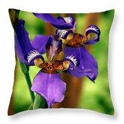 An Eyeful Iris Throw Pillow