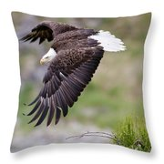 An Female Eagle Flys Protectively Over Throw Pillow