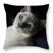 An Inquiring Mind Throw Pillow