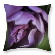 An Intimate Look Throw Pillow