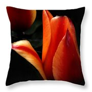an Invitation...  Throw Pillow