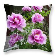 An Inviting Welcome Throw Pillow