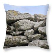 Stone Walls Throw Pillow
