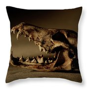 An Old Coyote Skull, Canis Latrans Throw Pillow