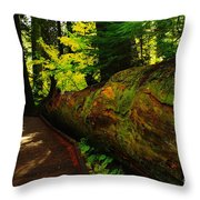 An Old Fallen Tree Throw Pillow