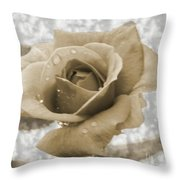 An Old Fashion Rose Throw Pillow