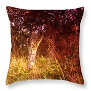 An Old Fence Post Throw Pillow
