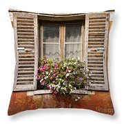 An Old French Window Throw Pillow