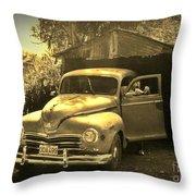 An Old Hidden Gem Throw Pillow by John Malone