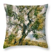 An Old Olive Grove Throw Pillow