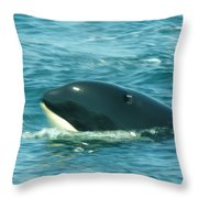 An Orca Surfaces  Throw Pillow