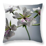 An Other Story... Throw Pillow