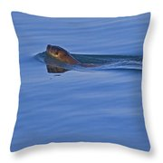 An Otter's Race Throw Pillow