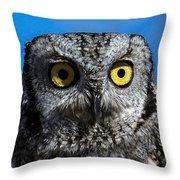 An Owl Throw Pillow