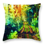 An Uncertain Path Throw Pillow