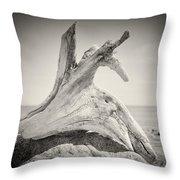 Analog Photography - Driftwood Throw Pillow