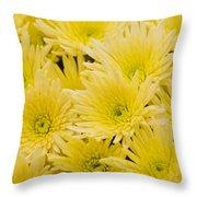 Anastasia Sunny Throw Pillow