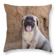 Anatolian Shepherd Puppy Throw Pillow