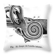 Anatomy: Middle Ear Throw Pillow