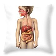 Anatomy Of A Childs Full Digestive Throw Pillow