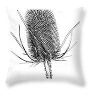 Anatomy Of A Weed Solarized Throw Pillow