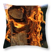 Anatomy Of Fire Throw Pillow