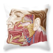 Anatomy Of Human Salivary Glands Throw Pillow