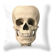 Anatomy Of Human Skull, Front View Throw Pillow