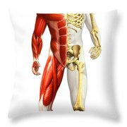Anatomy Of Male Body With Half Skeleton Throw Pillow
