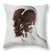 Anatomy Of Male Facial Muscles, Side Throw Pillow