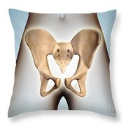 Anatomy Of Pelvic Bone On Female Body Throw Pillow