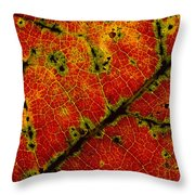 Anatomy Of The Fall... Throw Pillow
