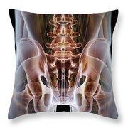 Anatomy Of The Hip Bones Throw Pillow