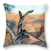 Anceint Canyon Watcher Throw Pillow