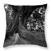 Ancestor Throw Pillow