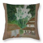 Ancestral House Throw Pillow