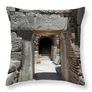 Ancient Arch Throw Pillow