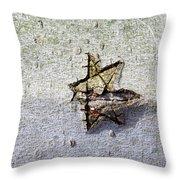 Ancient Art Throw Pillow