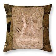 Ancient Artifact Throw Pillow