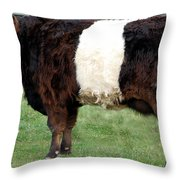 Ancient Breed Belted Galloway Throw Pillow