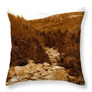 Ancient Brook - Sepia Tones Throw Pillow