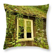 Ancient Cottage Throw Pillow